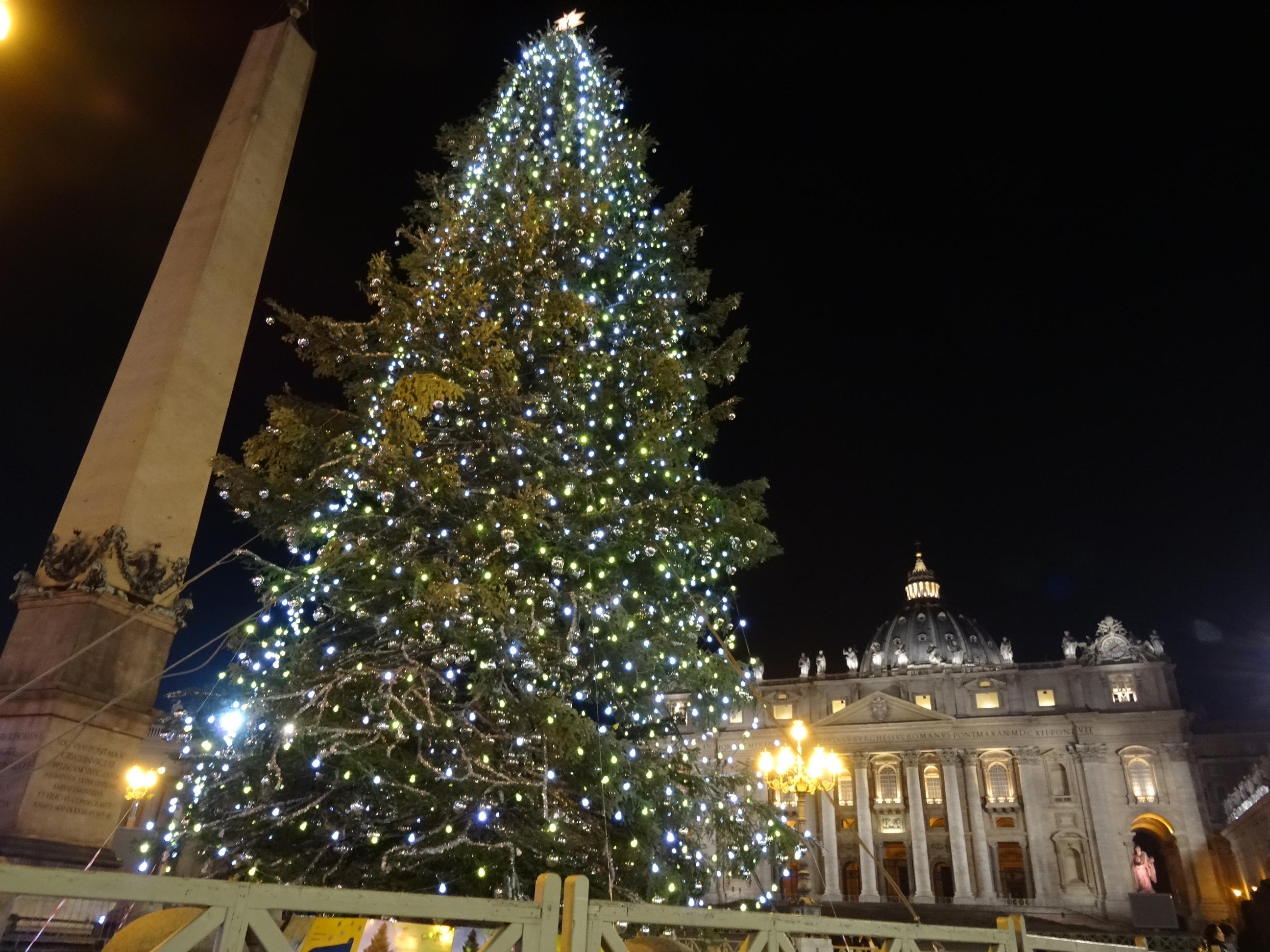 Royalblog Nl De Lichtjes Van De Kerstboom Zijn Aan