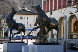 Liechtensteinvaduz2008